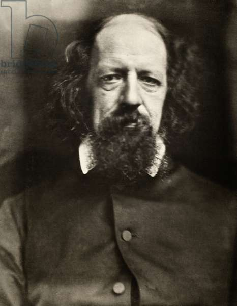ALFRED TENNYSON (1809-1892) 1st Baron Tennyson. English poet. Photographed by Julia Margaret Cameron, c.1867.