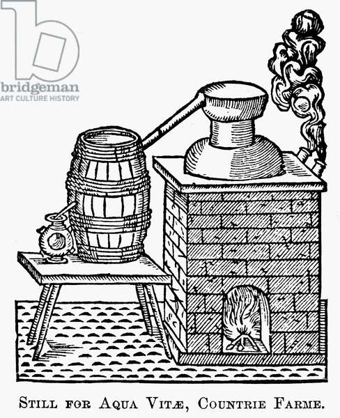 WHISKEY STILL, 1616 Woodcut, English.