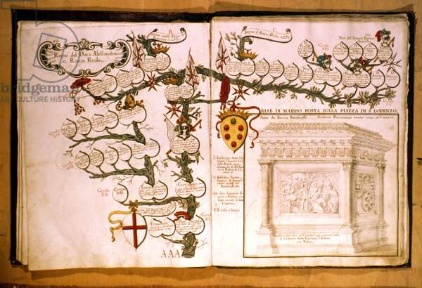 MEDICI FAMILY TREE Genealogical tree of the Medici family.
