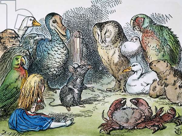 ALICE IN WONDERLAND, 1865. All the birds and animals 'sat down at once.' After the design by Sir John Tenniel for the first edition of Lewis Carroll's 'Alice's Adventures in Wonderland.'