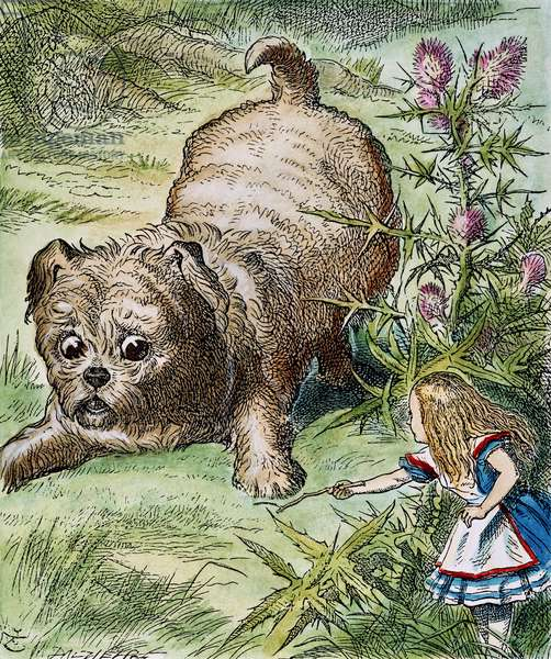CARROLL: ALICE, 1865 Alice encounters the enormous puppy. After the design by Sir John Tenniel for the first edition of Lewis Carroll's 'Alice's Adventures in Wonderland'.