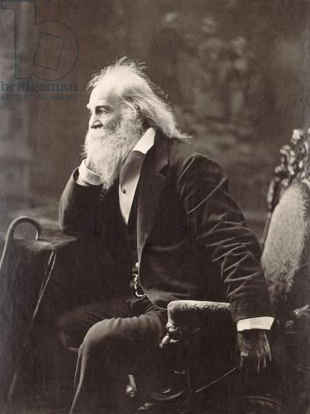 WALT WHITMAN (1819-1892) American poet. Photographed in 1881.