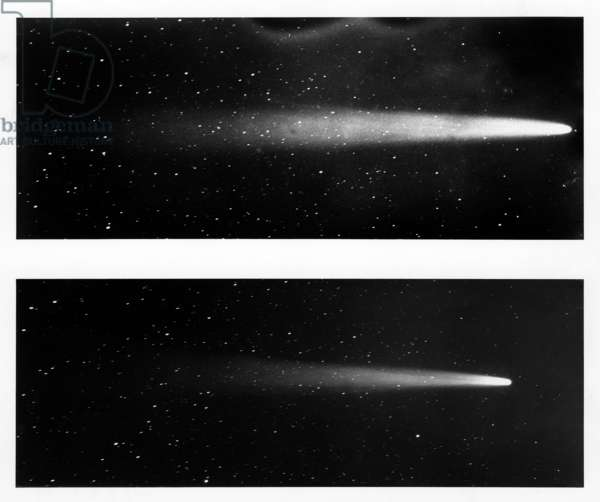 HALLEY'S COMET, 1910 Two views of Halley's Comet. Photographed from Honolulu, 12 May and 15 May 1910.