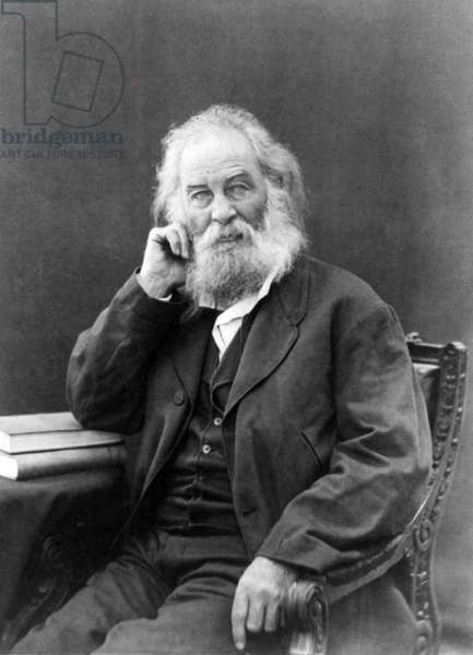 WALT WHITMAN (1819-1892) American poet. Photograph, 1871.