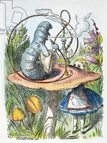 ALICE IN WONDERLAND, 1865 Advice from a caterpillar. Illustration by Sir John Tenniel from the first edition of Lewis Carroll's 'Alice's Adventures in Wonderland,' 1865.