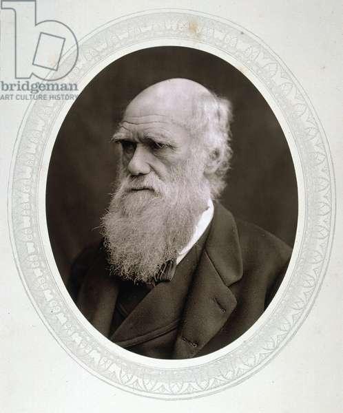 CHARLES DARWIN (1809-1882) English naturalist; photographed c.1878.