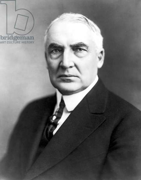 WARREN G. HARDING (1865-1923). 29th President of the United States. Photographed in 1920.