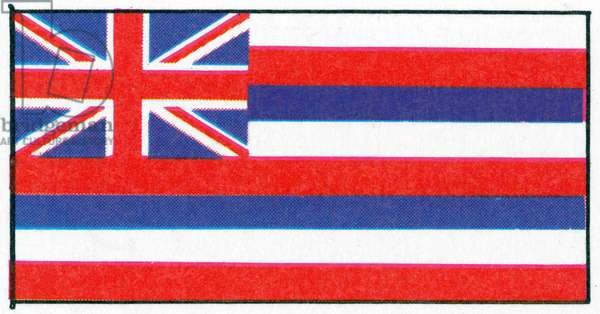 HAWAII: STATE FLAG.
