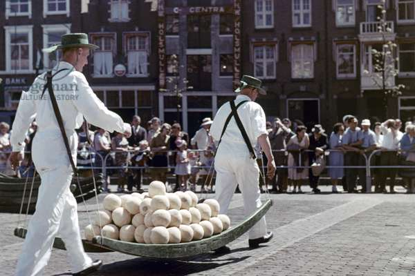 ALKMAAR CHEESE MARKET Netherlands.