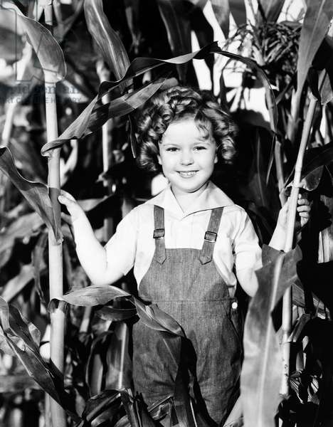 SHIRLEY TEMPLE (1928-2014) American child film actress.