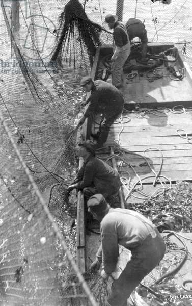 ALASKA: SALMON FISHING Fishermen using large nets to trap salmon in Alaska. Photograph, c.1920.