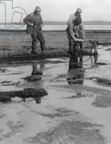 ALASKA: PETROLEUM, c.1910 Petroleum lake, Point Barrow, Alaska. Photographed c.1910.