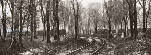 WORLD WAR I: ARMISTICE The spot in the forest where the Armistice was signed, with the train that served as Marshal Foch's headquarters on the left and the German's train on the right, Compiegne, France. Photograph, 1918.