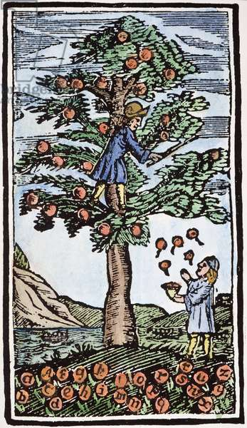 EDUCATION: SPELLER, 1710 Woodcut frontispiece from an American speller of 1710 showing the diligent student catching fruits of knowledge, picked for him by his teacher.