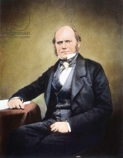 CHARLES ROBERT DARWIN (1809-1882): oil over a photograph, c. 1855.