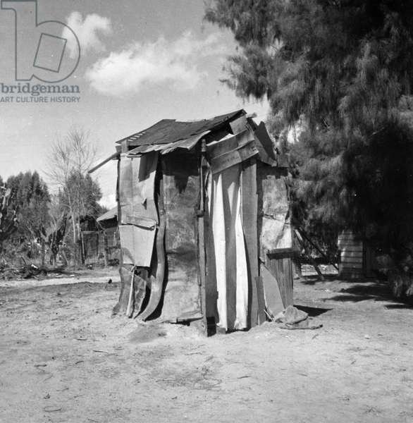 Squatter shelter of migrant farmers in California, 1935 (b/w photo)