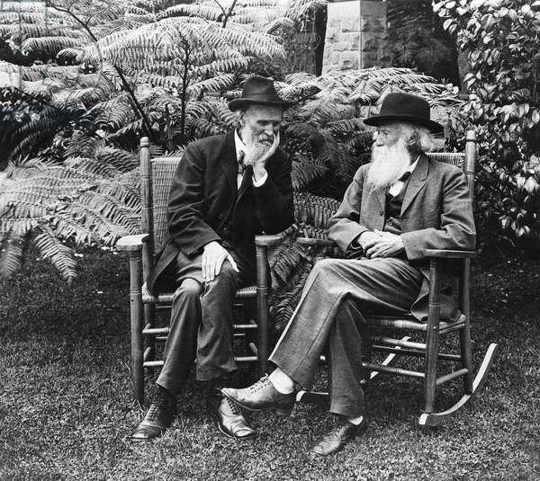 MUIR & BURROUGHS, c.1909 American naturalists John Muir (left) and John Burroughs. Photograph, c.1909.