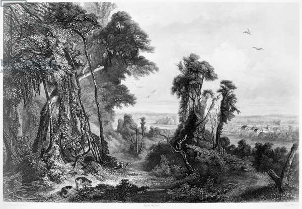 NEW HARMONY, 1844 The Owenite communal society of New Harmony on the bank of the Wabash River in Indiana. Aquatint engraving, 1844, after Karl Bodmer.
