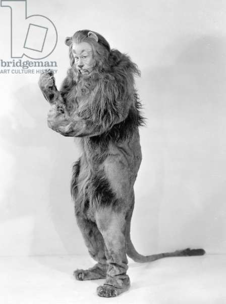 WIZARD OF OZ, 1939 Bert Lahr as the Cowardly Lion in the 1939 MGM production of 'The Wizard of Oz.'