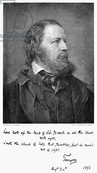 ALFRED TENNYSON (1809-1892) 1st Baron Tennyson. English poet. Wood engraving, 1893, after a photograph.