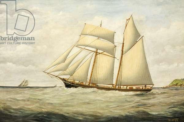 Schooner Saltram, 1890-1900 (oil on canvas)