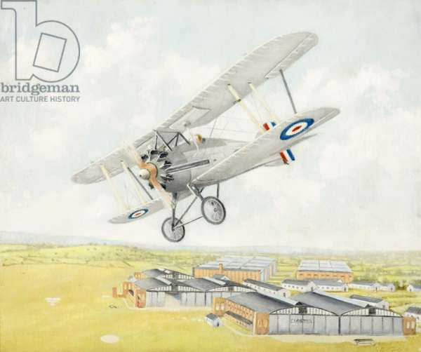 Gloster Aircraft, Gamecock, 1924-62 (oil on board)