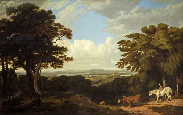 Newnham-on-Severn, Gloucestershire, from Dean Hill (oil on canvas)