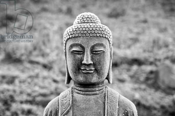 A statue of the medicine buddha in the herb garden at zen temple Ryumonji (b/w photo)