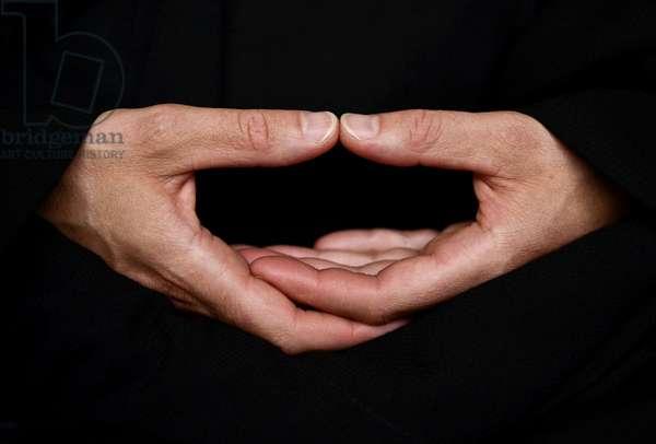 The cosmic mudra of meditation (photo)