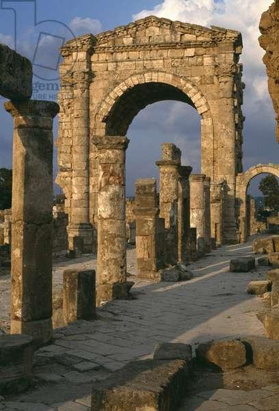 Arch of triumph (photo)