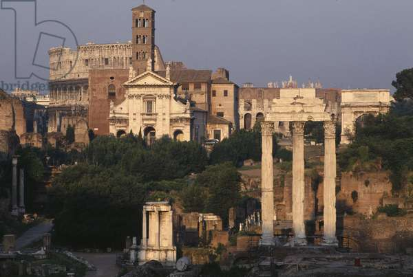 View of the Forum (photo)