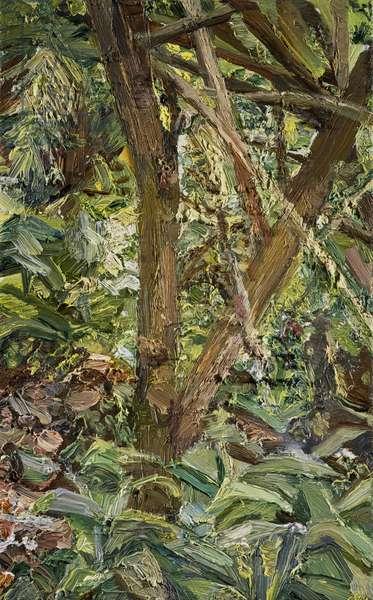 Small Garden, 1997 (oil on canvas)