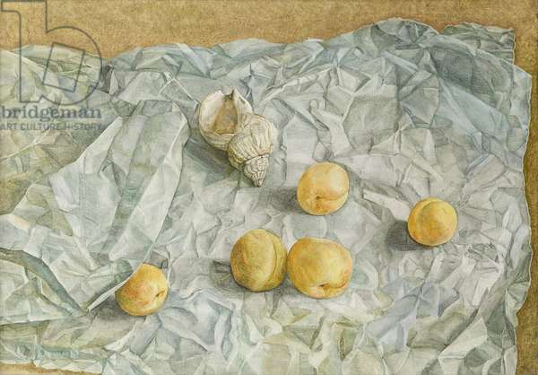 Still Life with Apricots and Shell, 1949 (oil on canvas)