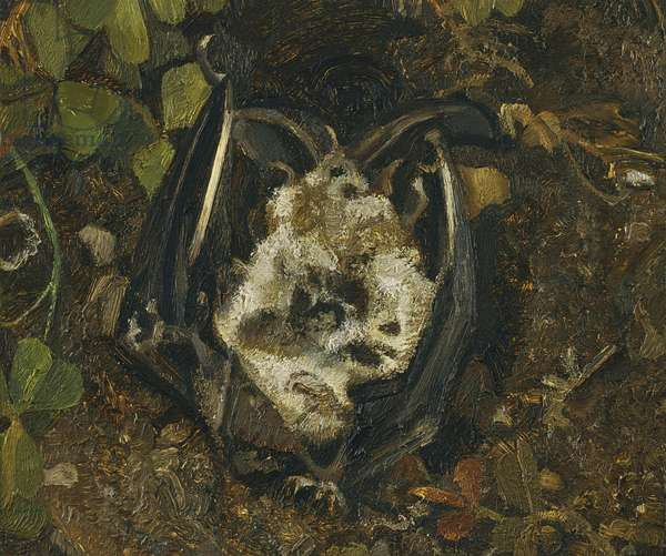 Another Dead Bat, 1980-81 (oil on canvas)
