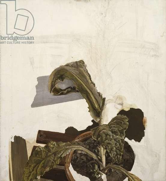 Plant Fragment, c.1970 (oil on canvas)