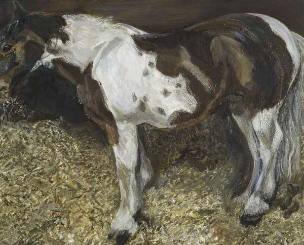 Mare Eating Hay, 2006 (oil on canvas)