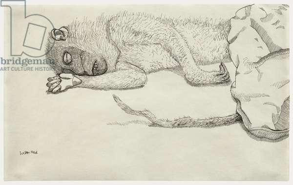 Dead Monkey, c.1944 (ink on paper)