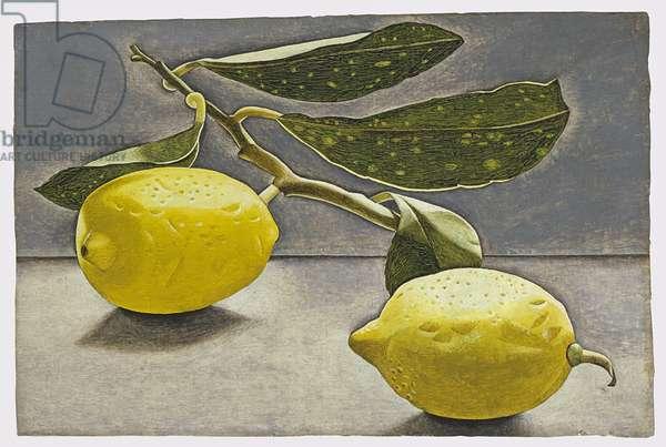 Lemon Sprig, 1947 (oil on board)