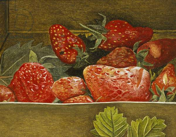 Strawberries, 1952 (oil on copper)