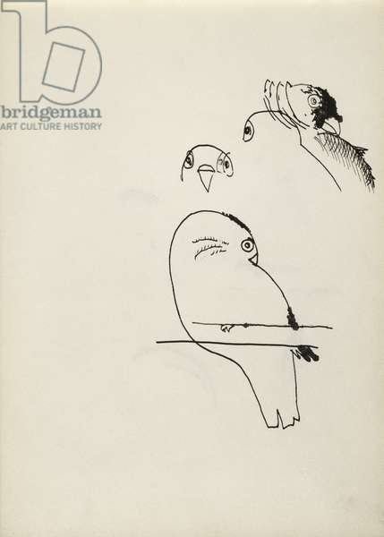Study for The Birds of Oliver Laronde (2), 1946 (ink on paper)