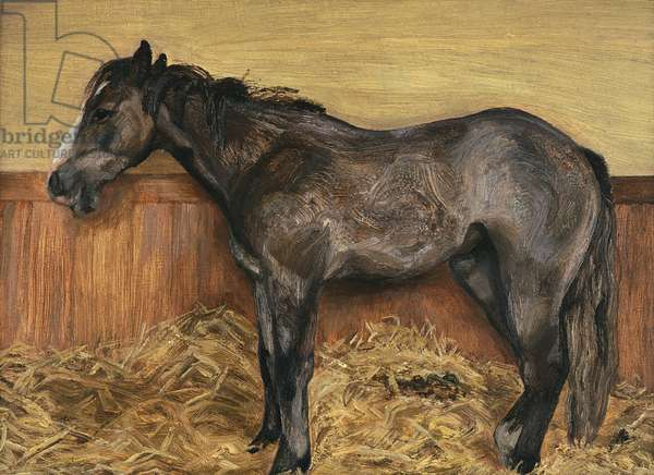 A Filly, 1970 (oil on canvas)