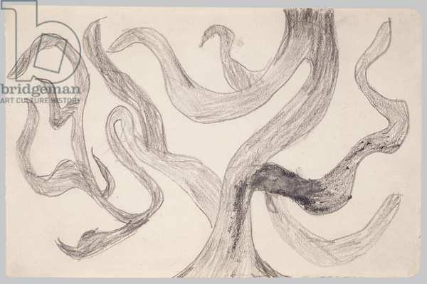 Tree (ll), c.1928 (crayon on paper)