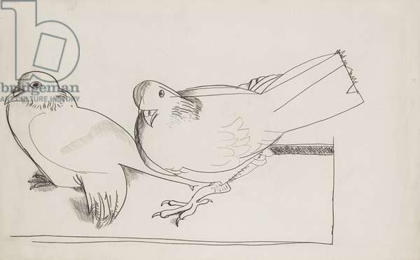 Two Pigeons, 1947 (crayon on paper)
