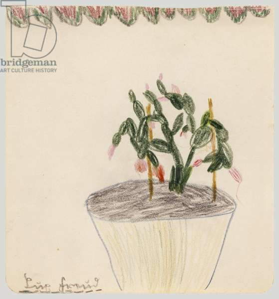 Cactus, 1930s (crayon on paper)