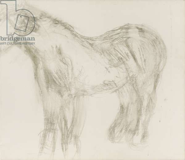 Sketch of Goldie, c.2003 (oil and charcoal on canvas)