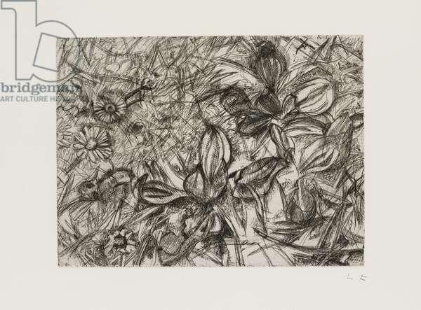Landscape, 1993 (etching)