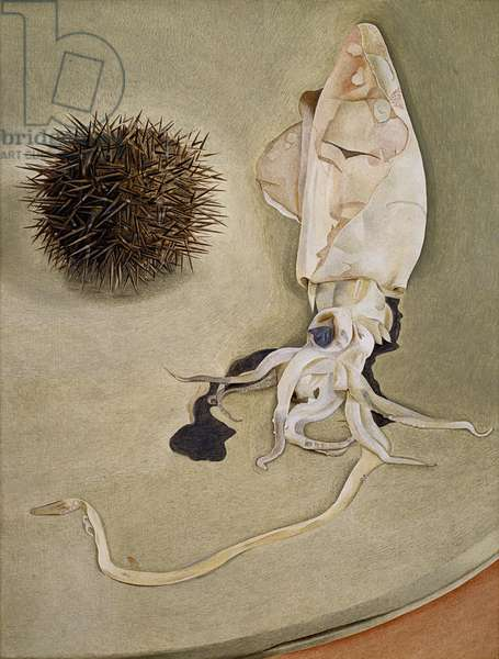 Still life with a sea urchin, 1949 (oil on copper)