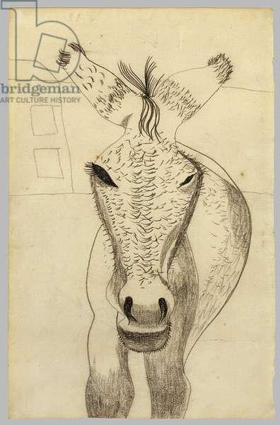 Donkey (Tommy) c.1942/43 (black crayon on paper)