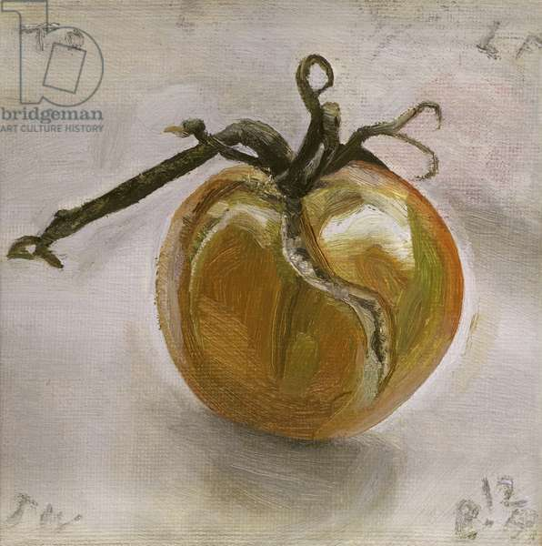 Tomato, 1959 (oil on canvas)