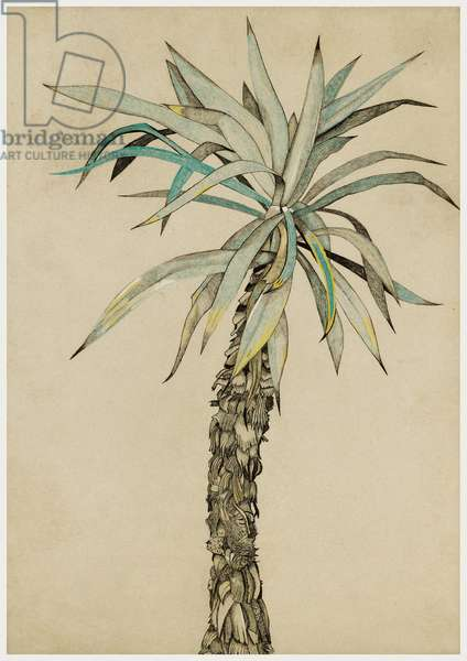 Palm Tree, 1944 (pastel, chalk & ink on paper)
